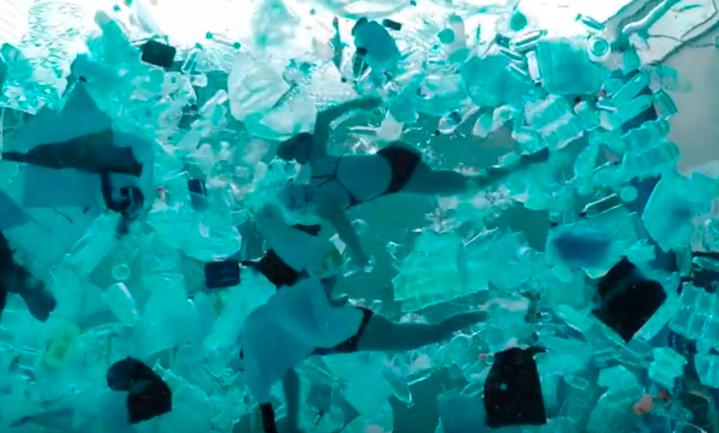 Zo snap je wat al dat plastic in de zee betekent voor de zeebewoners