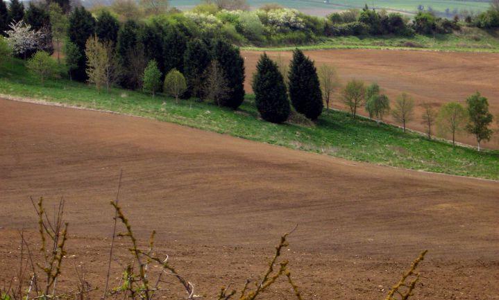 Britse boeren lappen EU-regels aan hun laars na Brexit