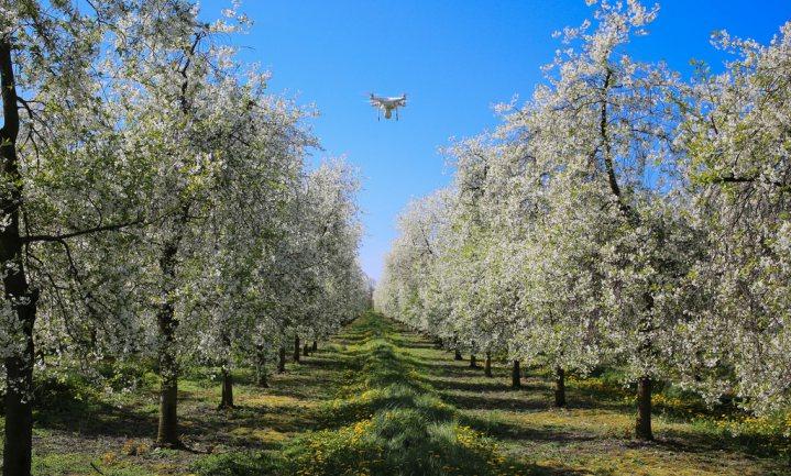 Nieuwste digitale technologie te duur en onpraktisch voor boeren