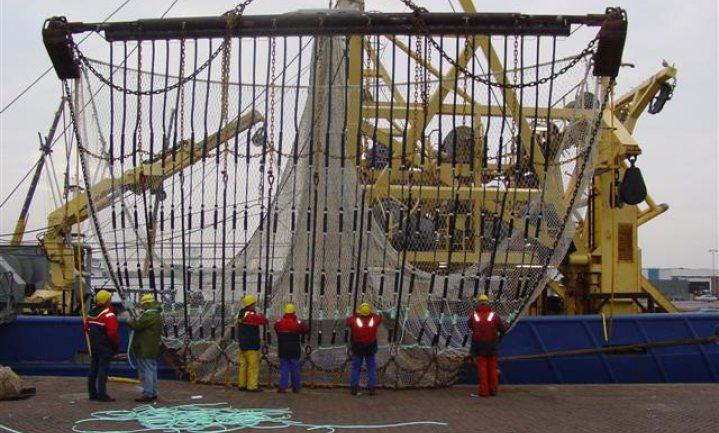 Geen onderzoek naar mogelijke fraude Nederlandse pulsvisserij