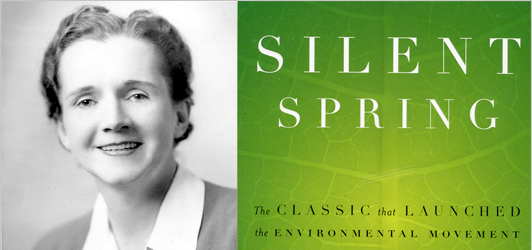 Donderdag 27 september: Silent Spring Day