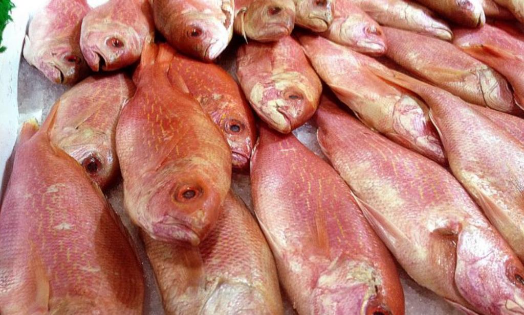Een derde van de vis is verkeerd gelabeld