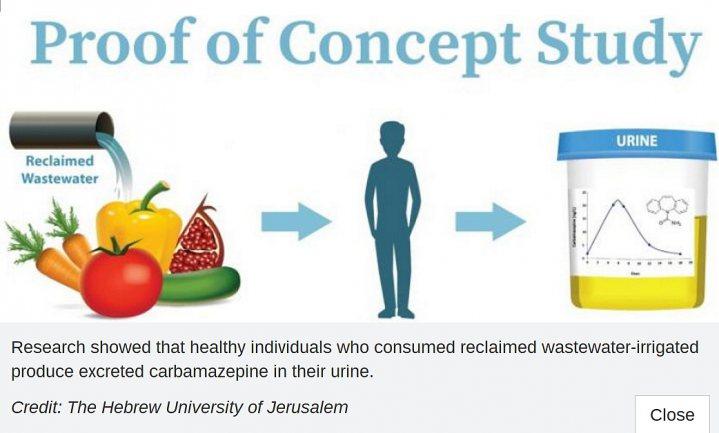 Recycling brengt medicijnresten terug in voedselketen