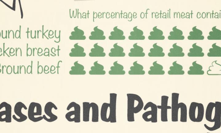 Van poepvlees & asbestbrood naar de 'eerlijkste prijsgarantie'