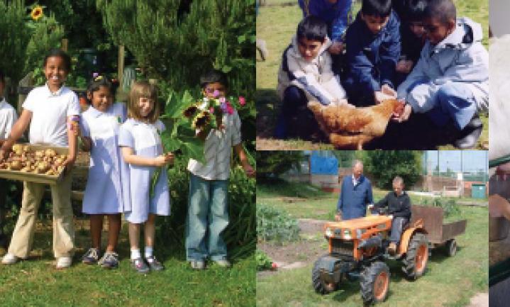 Schoolboerderijen UK: dat zijn nog eens smaaklessen