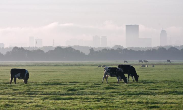 CDA, PvdA, SGP, CU en LTO willen 'ministerie van voedsel'