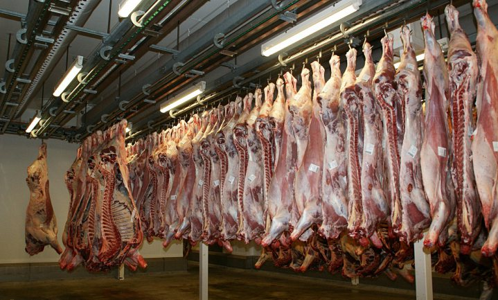 FAVV sluit runderslachthuis om 'gebrekkige hygiëne'