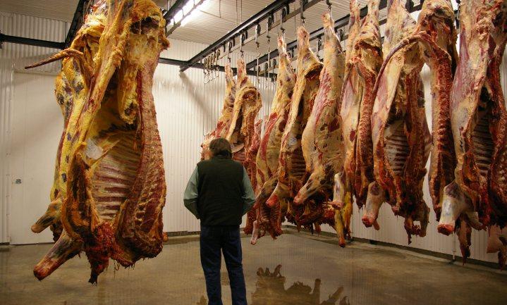 VS: slachthuis beschuldigd van fraude met zieke dieren
