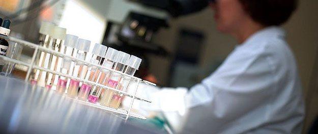 Illegaal gebruik gesexed sperma in biologische melkveehouderij