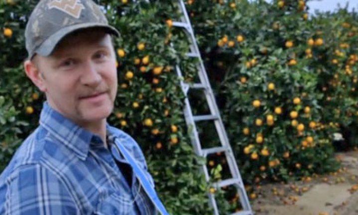 Amerika's Polen in de land- en tuinbouw