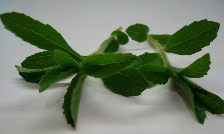Hoe 'natuurlijk' is stevia?