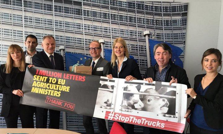Tegen lange veetransporten komt alvast een werkgroep, zegt Eurocommissaris