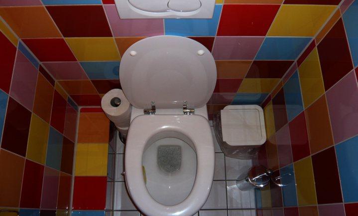 Waarom het wereld toiletdag is