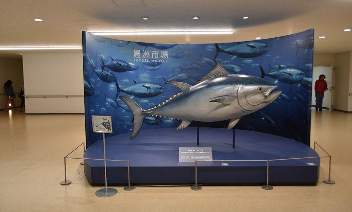 Japanse 'sushikoning' betaalt recordbedrag van €2,7 miljoen voor tonijn van 278 kilo