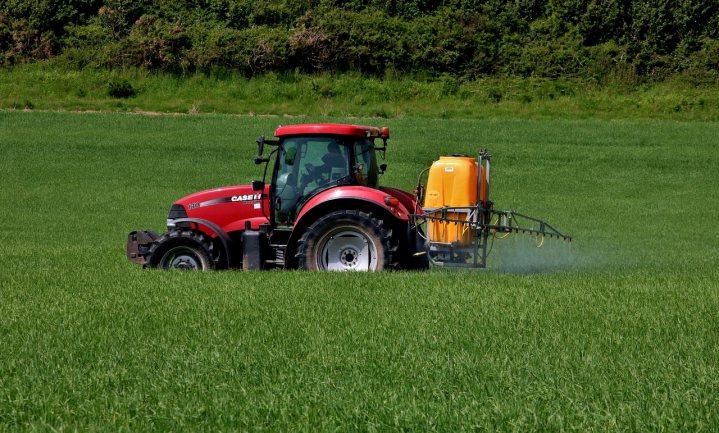 Regels belemmeren vooruitgang in veilige teelt van sterke gewassen