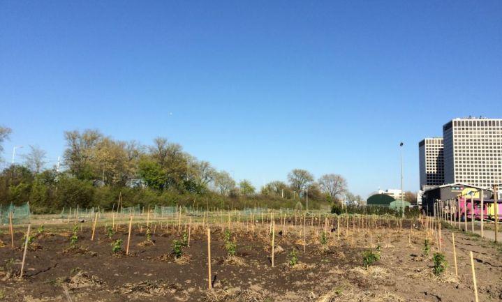 Zelfvoorzienende wijken met eigen boerderij in België