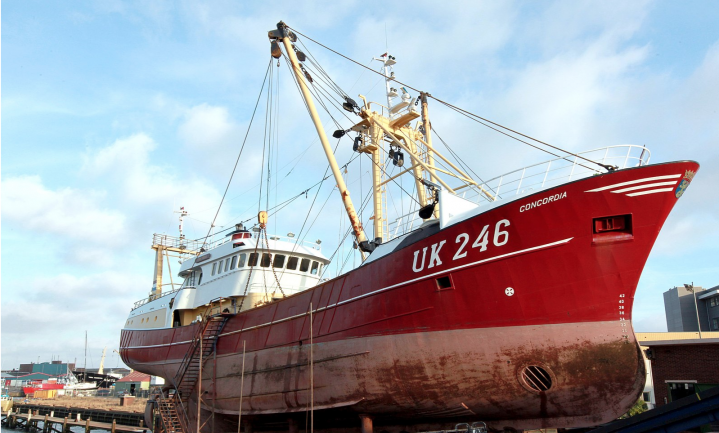 Urker vissers niet in de stemming voor Vlaggetjesdag