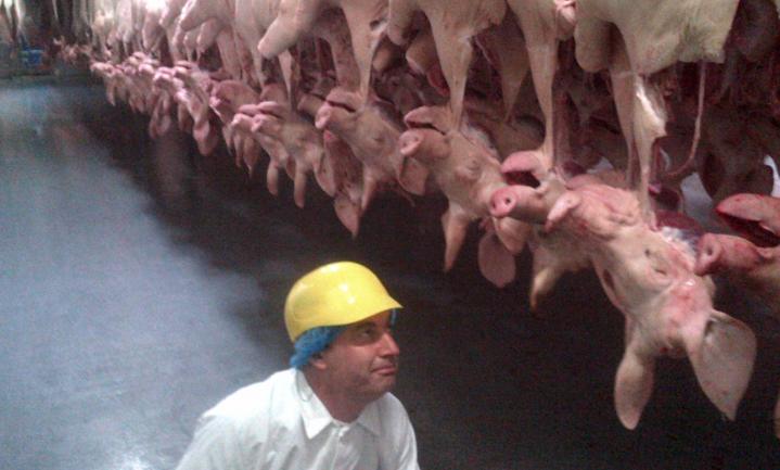 Rusland heropent grenzen voor varkensvet en -organen