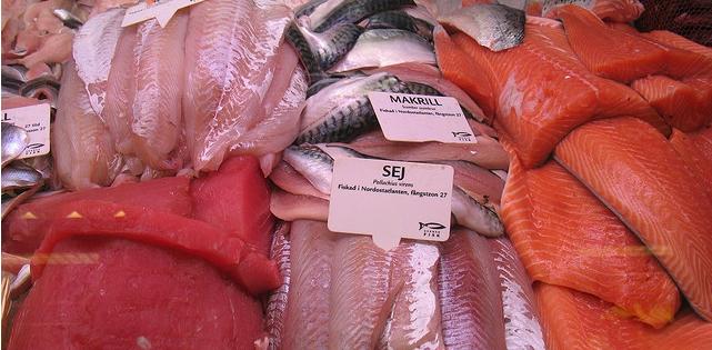 Van vlees naar vis