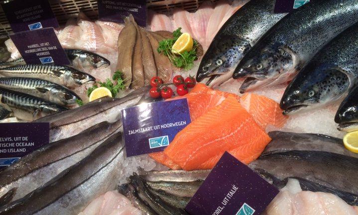 Wakker Dier wil verbod op onverdoofde slacht van vissen