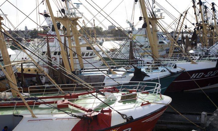 Windmolens van het energieakkoord kosten vissersvloot 'honderden miljoenen'