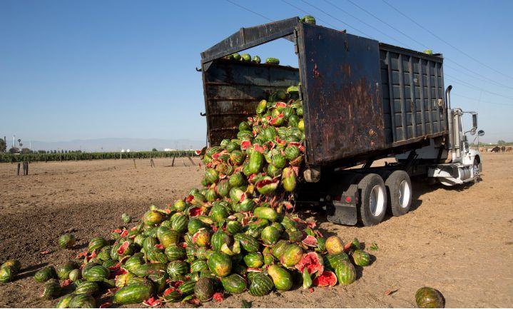 'Onrealistische schoonheidseisen' oorzaak extra voedselverspilling VS