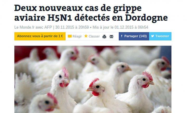 Meer vogelgriep H5N1 in Franse pluimveeregio Dordogne