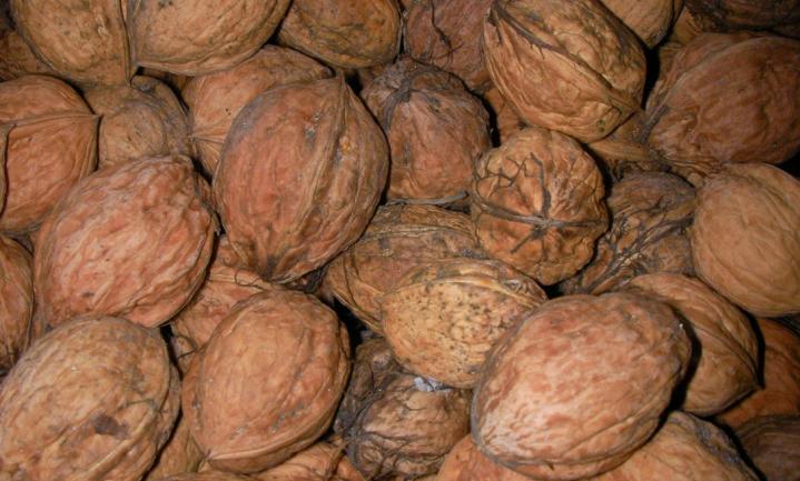 Plantsterolen verlagen het risico op hart- en vaatziekten niet