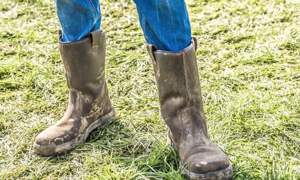 Geestelijk welzijn van agrariërs wordt nauwelijks onderzocht