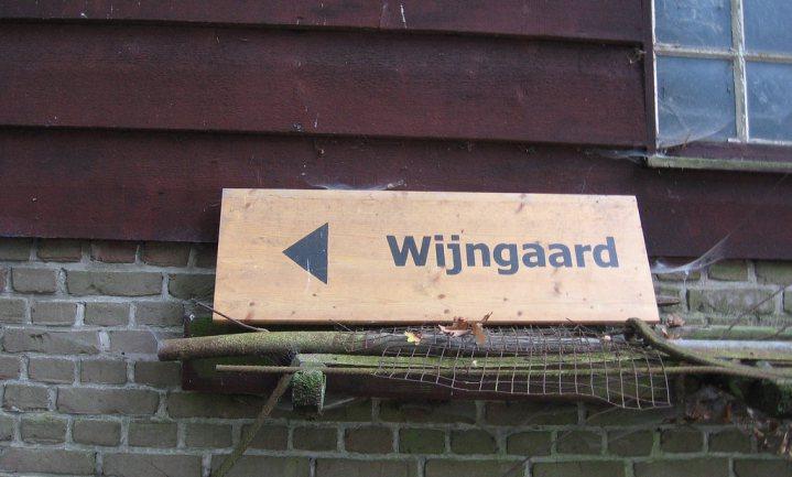 Lekkerste wijn Nederland komt uit moestuin