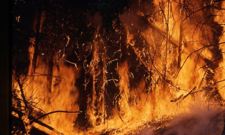 Bosbranden wakkeren eigen verspreiding aan