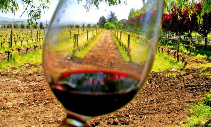 Wijndrinkers willen meer goede wijn dan er is