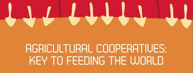 Wat betekent Wereldvoedseldag?