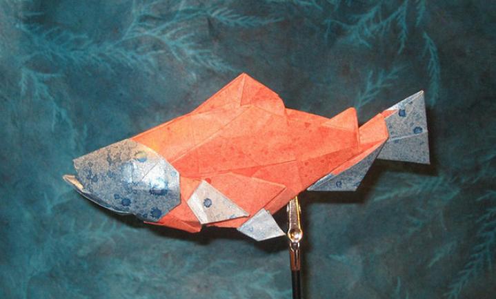 Visch uit Zweden