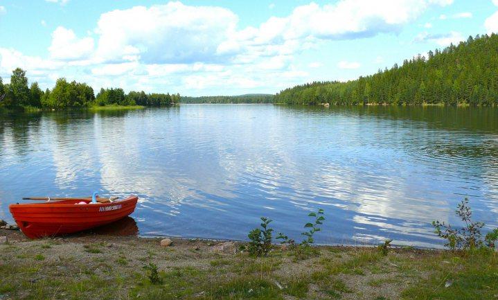Keert het tij voor de Zweedse houtindustrie?