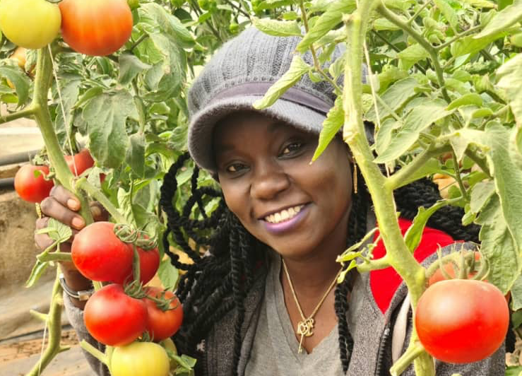 Let's Talk Agriculture: The Invincible Farmer